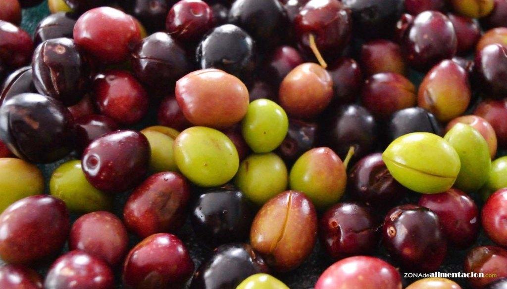calorías, índice glucémico y valor nutritivo o nutricional de las olivas o aceitunas