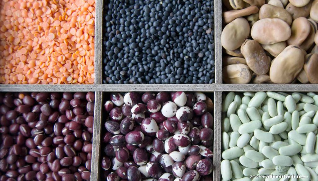 Legumbres, alto valor nutritivo - propiedades y valor nutritivo de legumbres