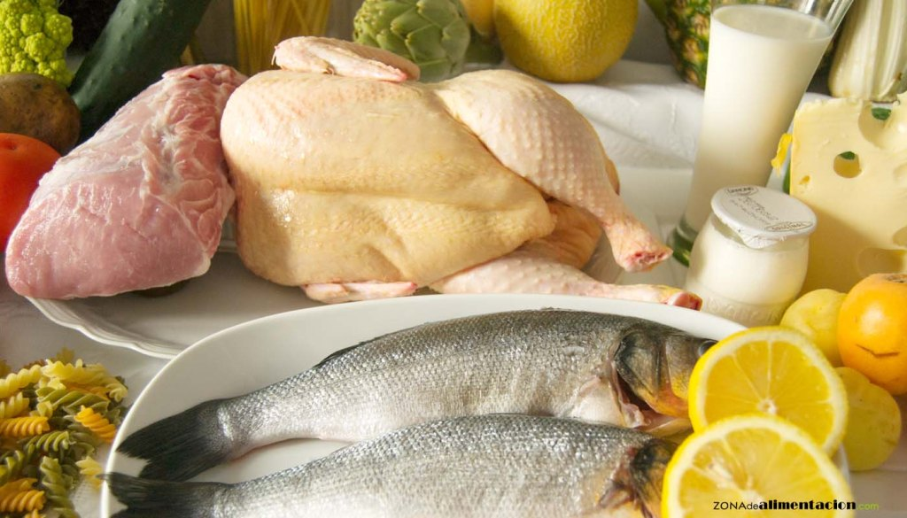 En qué alimentos se encuentran las proteínas y cómo controlar su consumo