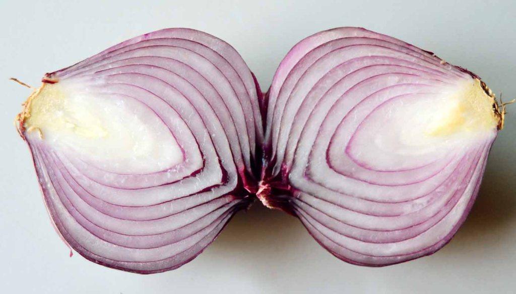 calorías, índice glucémico y valor nutritivo o nutricional y propiedades de las cebollas