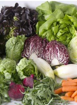 Zumos verdes, sus ventajas nutritivas y alguna receta