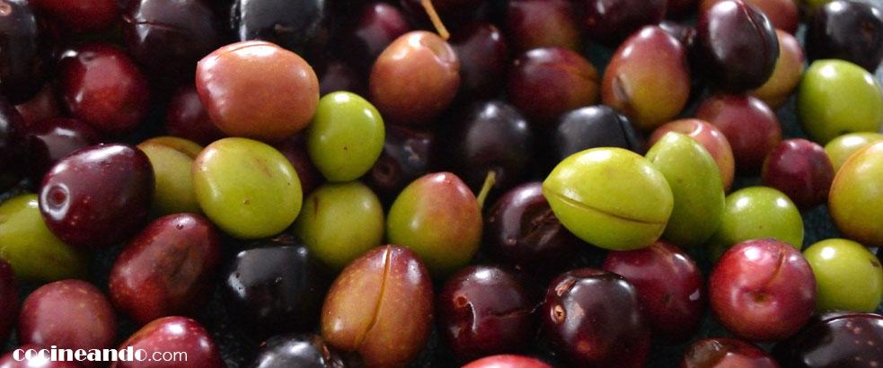 Diez alimentos de bajo índice glucémico: aceitunas