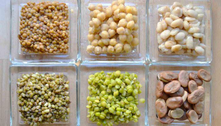 Cuántas raciones semanales de legumbre hay que comer en una alimentación sana y equilibrada