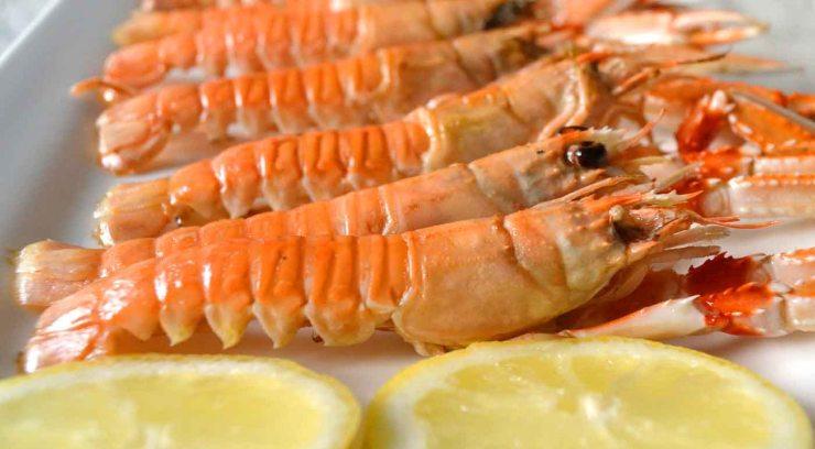 Consejos para comprar y conservar mariscos