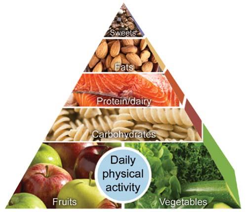 En qué consiste la auténtica dieta Clínica Mayo: la pirámide alimenticia de la dieta Clínica de Mayo - dietas bajas en calorías o hipocalóricas - dietas para adelgazar