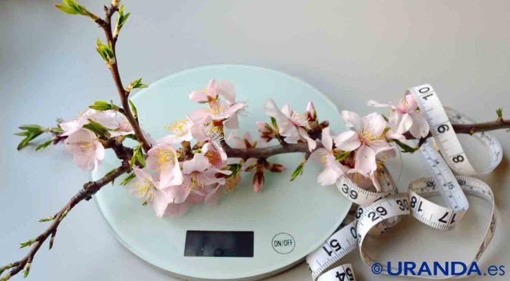 Las dietas para adelgazar también pueden ser un producto de consumo - alimentacion consciente - coaching nutricional