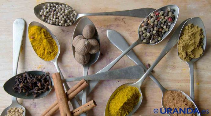 La influencia cultural en la formación de hábitos de alimentación - coaching nutricional - alimentación consciente