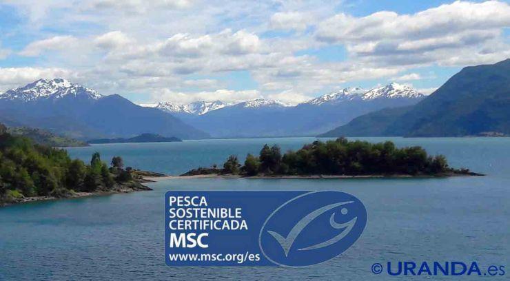 Sello azul MSC, la etiqueta de la pesca sostenible