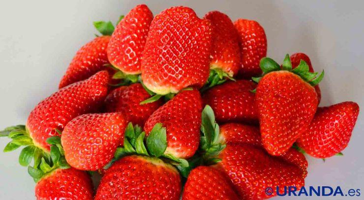 Las ocho frutas más diuréticas y depurativas - fresas