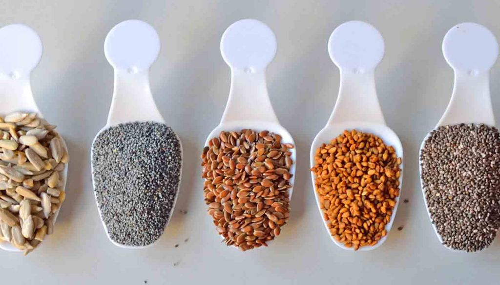 Nueve alimentos que son fuente de proteínas vegetales: semillas