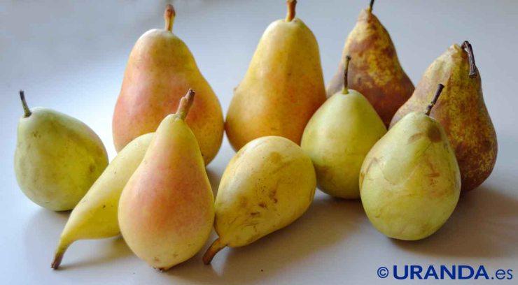 Las ocho frutas más diuréticas y depurativas - peras