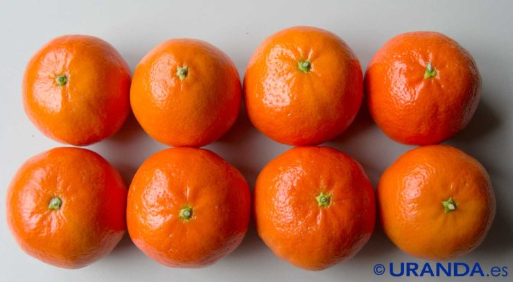 Las ocho frutas más diuréticas y depurativas - mandarinas