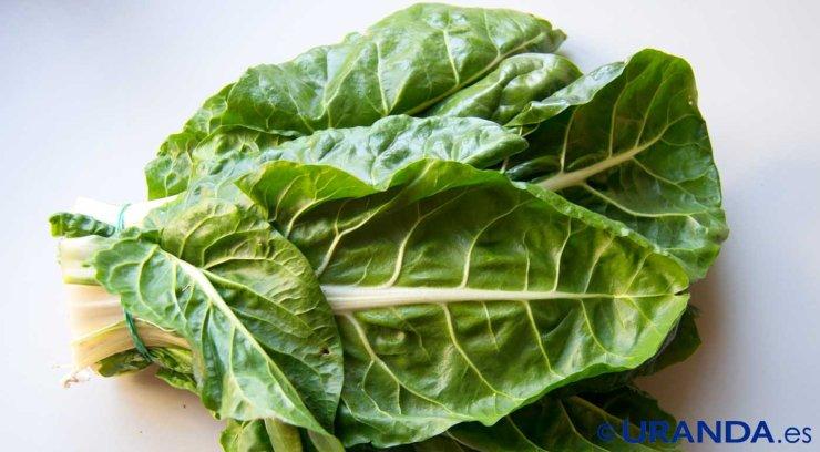 Las diez verduras y hortalizas más diuréticas y depurativas:  verduras de hoja