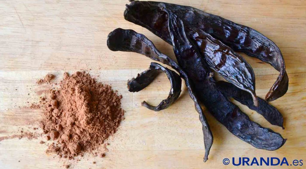 Algarroba, harina y alternativa al cacao y al chocolate