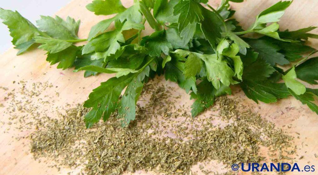 Las diez verduras y hortalizas más diuréticas y depurativas: perejil, cilantro y perifollo