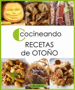 Cocineando Recetas de Otoño - libros ebooks de cocina gratuito en PDF - descargas gratis